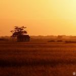 domček v puste - Andrej Chudy